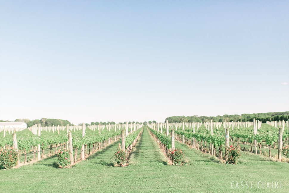 Martha_Clara_Vineyards_Wedding_34.jpg