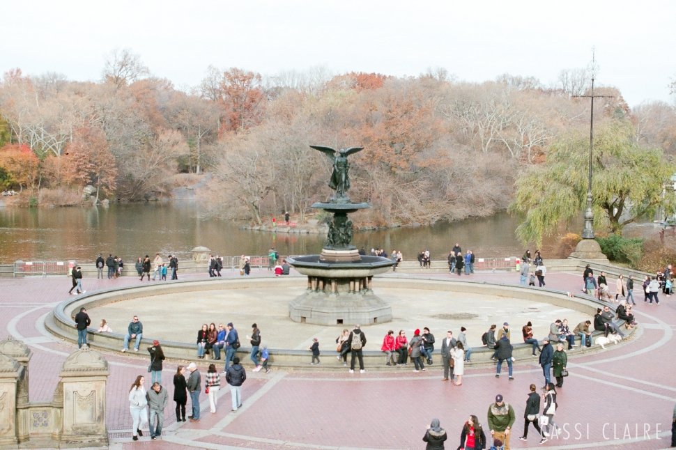Christmas-in-Central-Park_CassiClaire_02.jpg