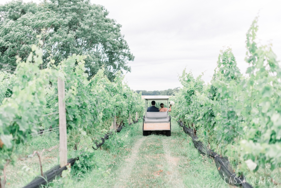 The-Vineyards-at-Aquebogue-Wedding_Cassi-Claire_63.jpg