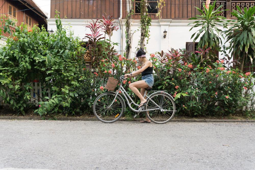 Sari Biking Through Luang Prabang