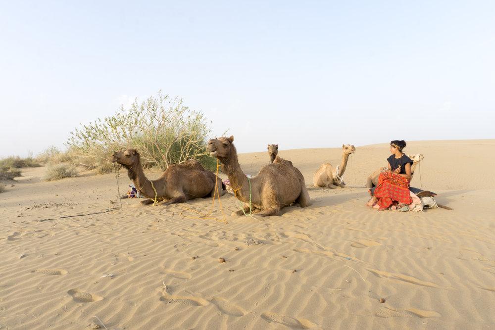 Sari, Sandeep and his friends