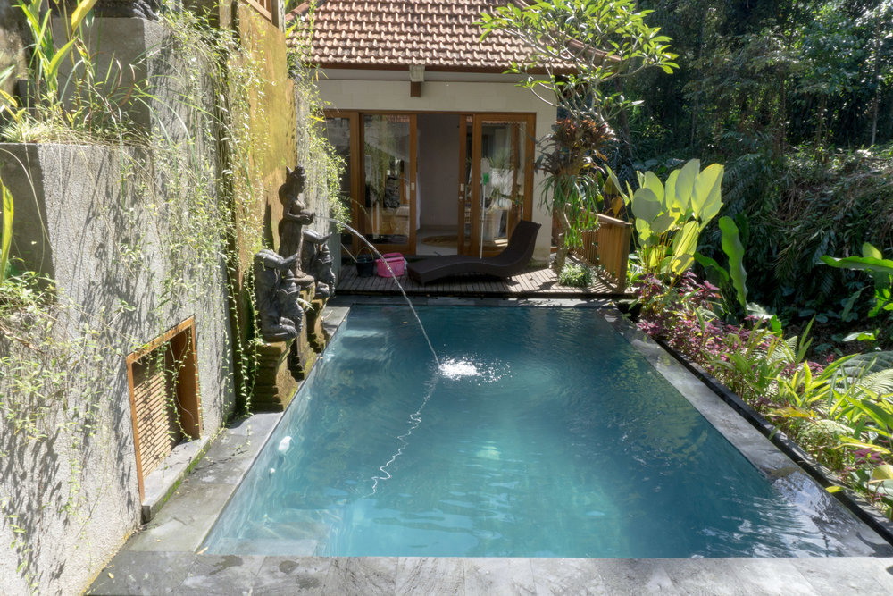 Shared pool in our Ubud villa