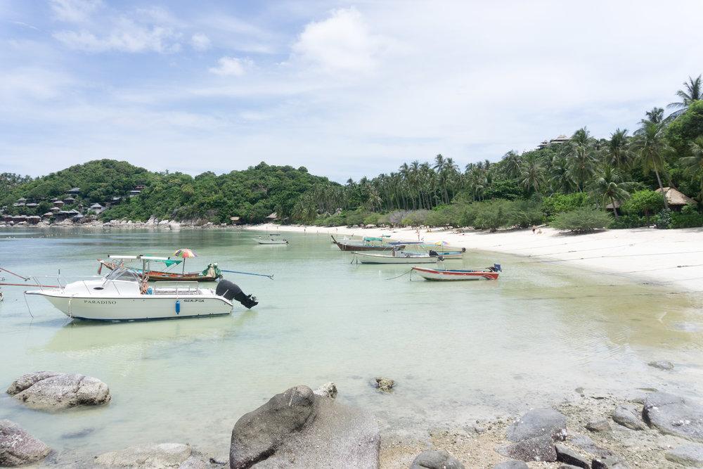 Koh Tao Beach Life