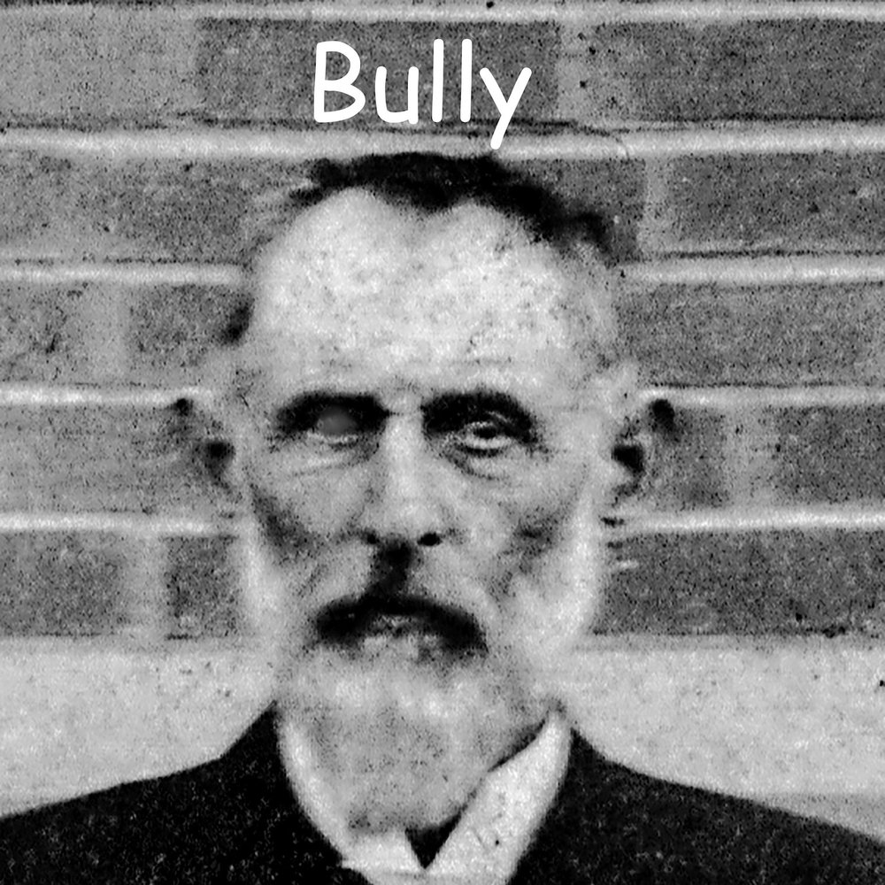 George Montgomery Dallas Davis : Bully