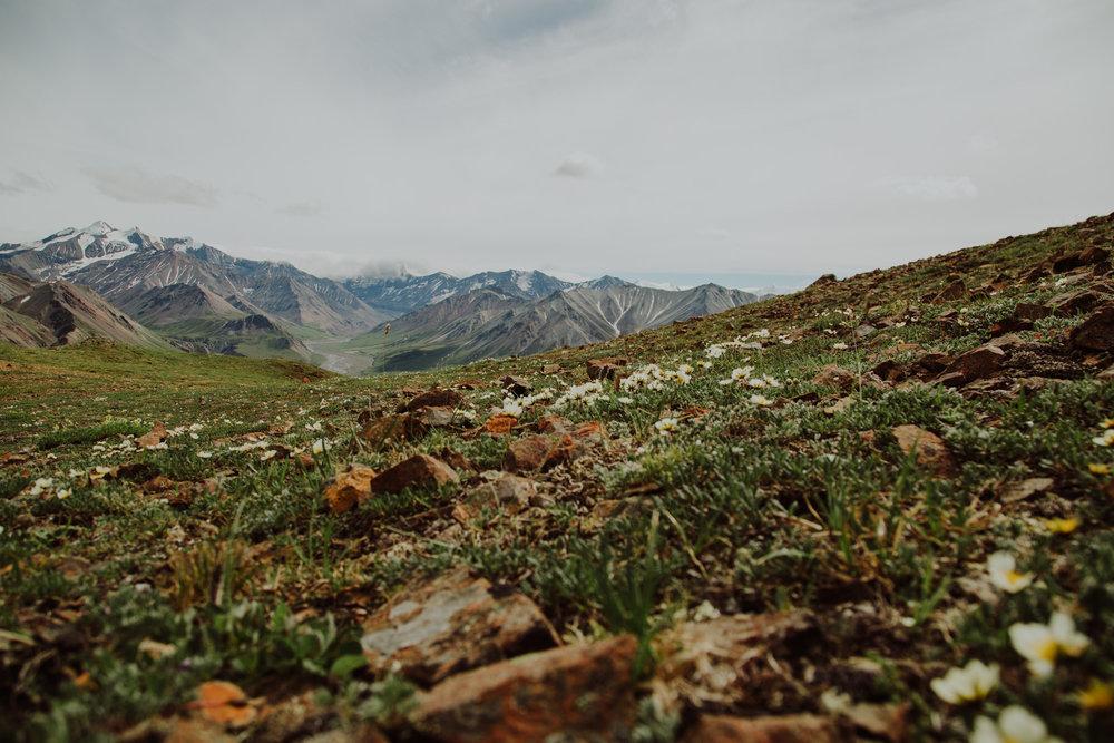 Alaska-59.jpg