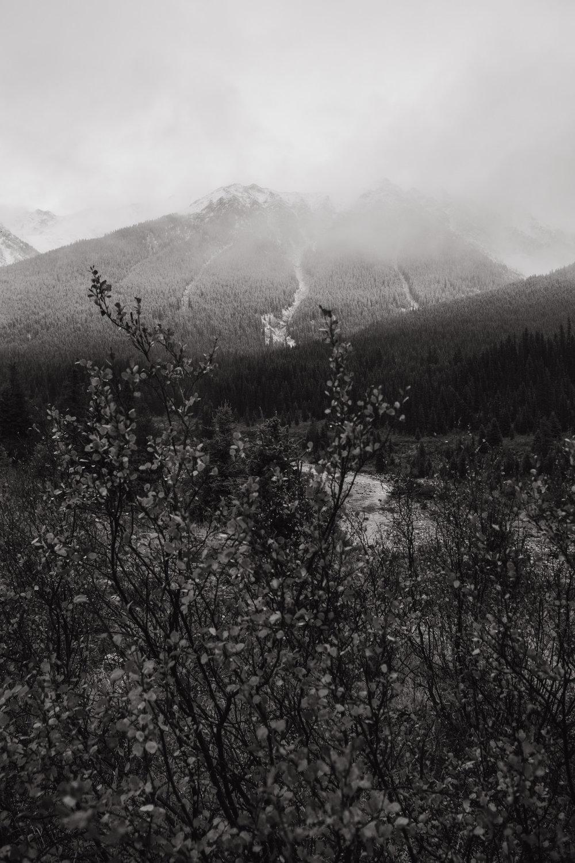 Canada camping-6.jpg