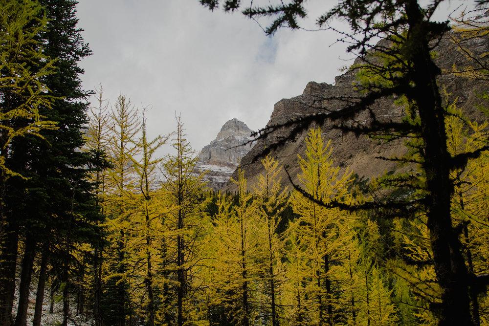 Canada camping-34.jpg