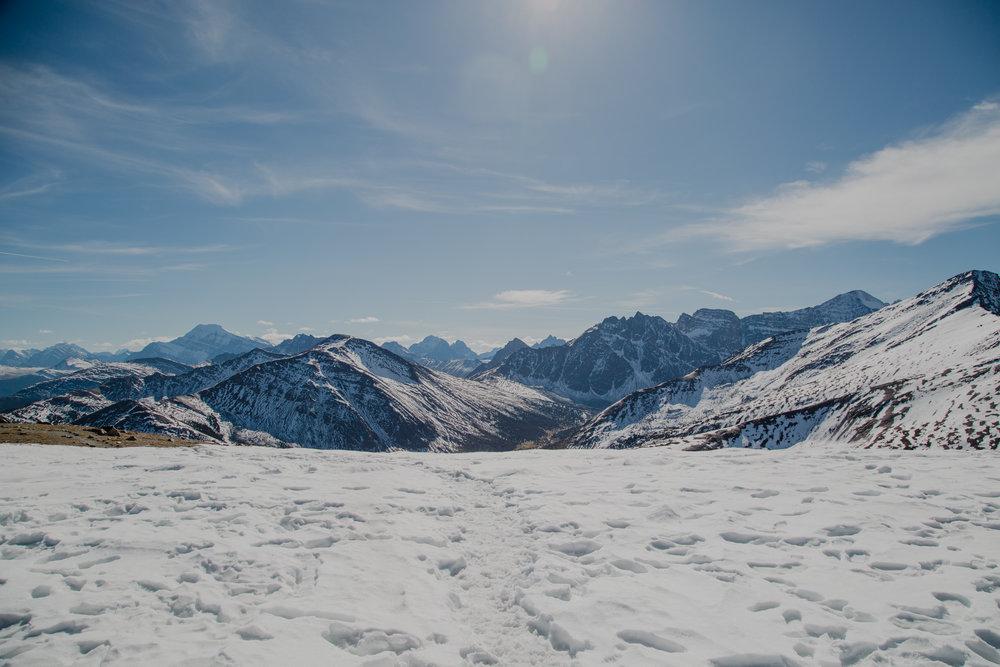 Jasper National Park  -163.jpg