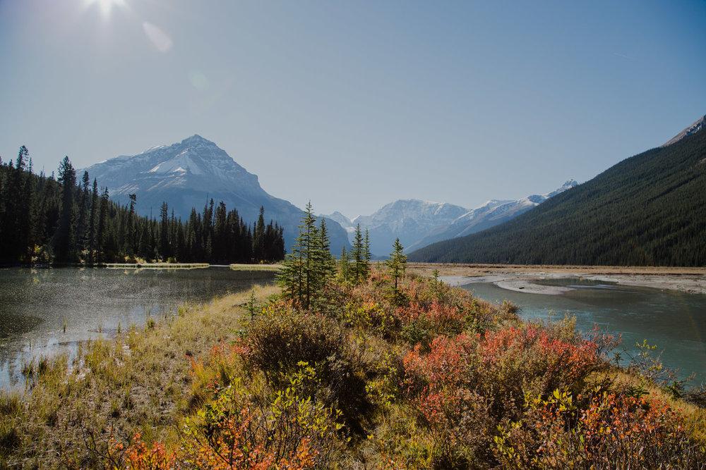Jasper National Park  -222.jpg