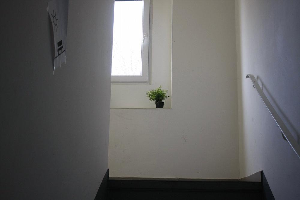 Das Haus_11.jpg