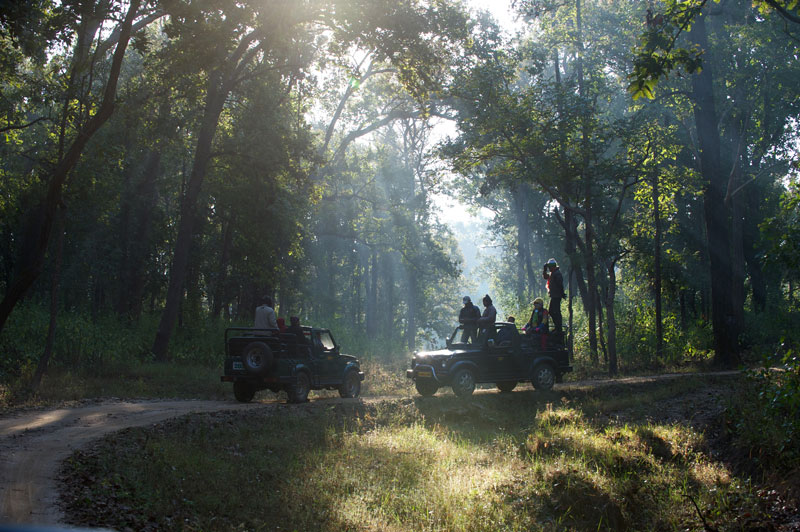 IND_Kanha-National-Park-©12-Thomas-Baechtold-0032.jpg