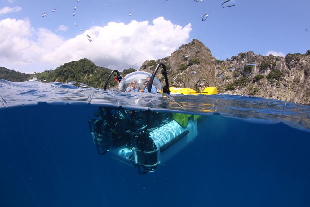 CRI_MV-Argo-DeepSee-Submersible-©-Avi-Klapfer-2000.jpg