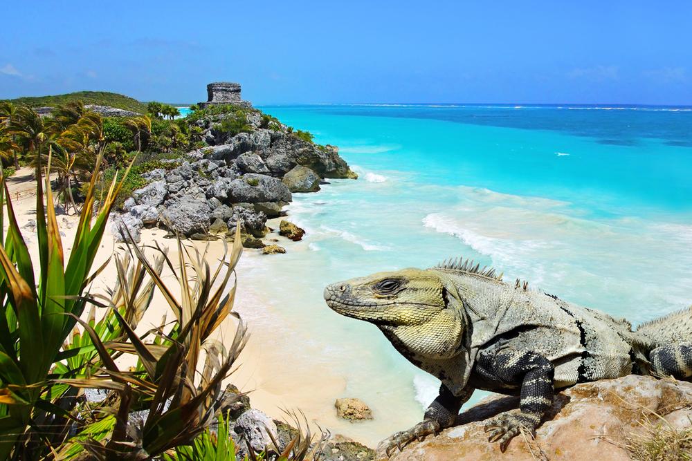 MEX_Tulum-Mayan-Ruins-©-Adobe-Stock.png