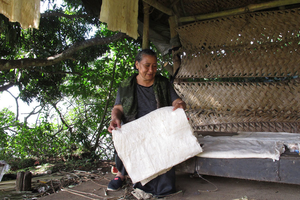 TON_Nuku-Alofa-Happy-Kingdom-Land-Tour-©17-Natalia-Baechtold-066.jpg