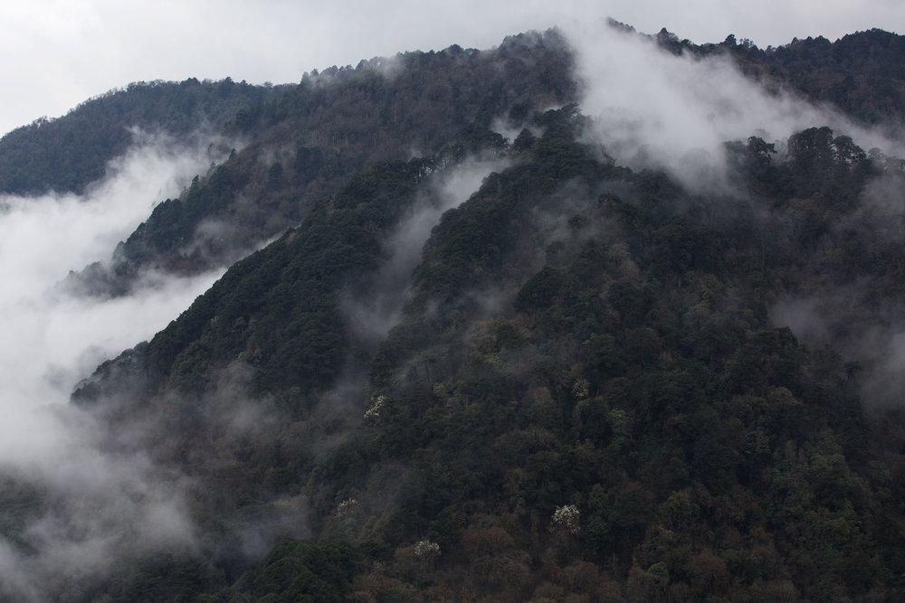 BTN_Bumthang-to-Mongar-©17-Thomas-Baechtold-157.jpg