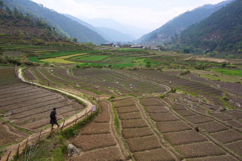 BTN_Punakha-©17-Thomas-Baechtold-989.jpg