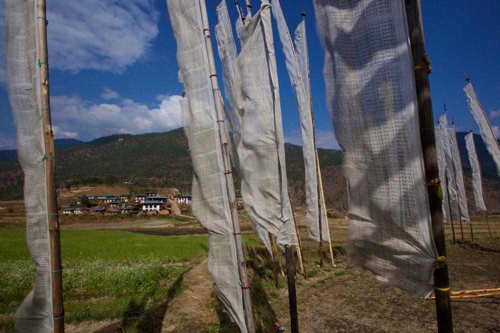 BTN_Thimpu-to-Punakha-©17-Thomas-Baechtold-755.jpg