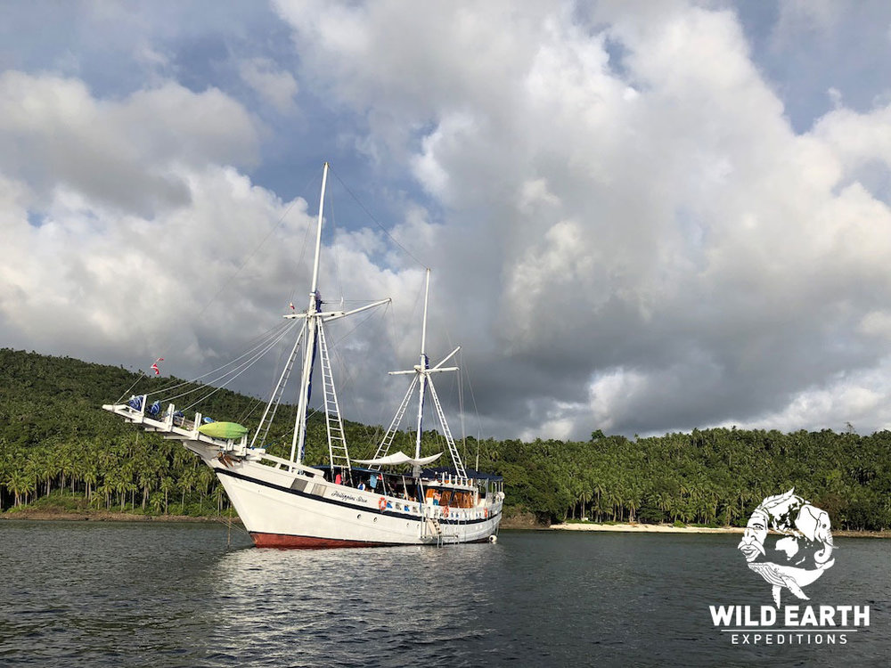 S/Y Philippine Siren - Philippines - Wild Earth Expeditions
