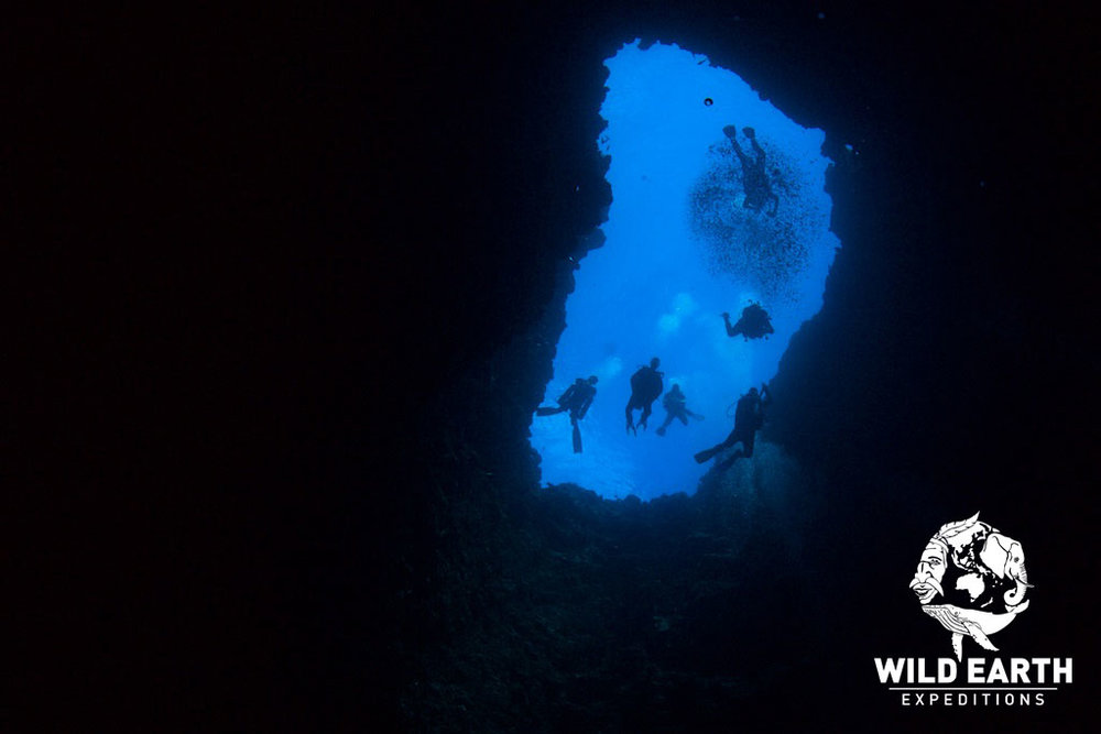 Blue Hole - Palau - Wild Earth Expeditions