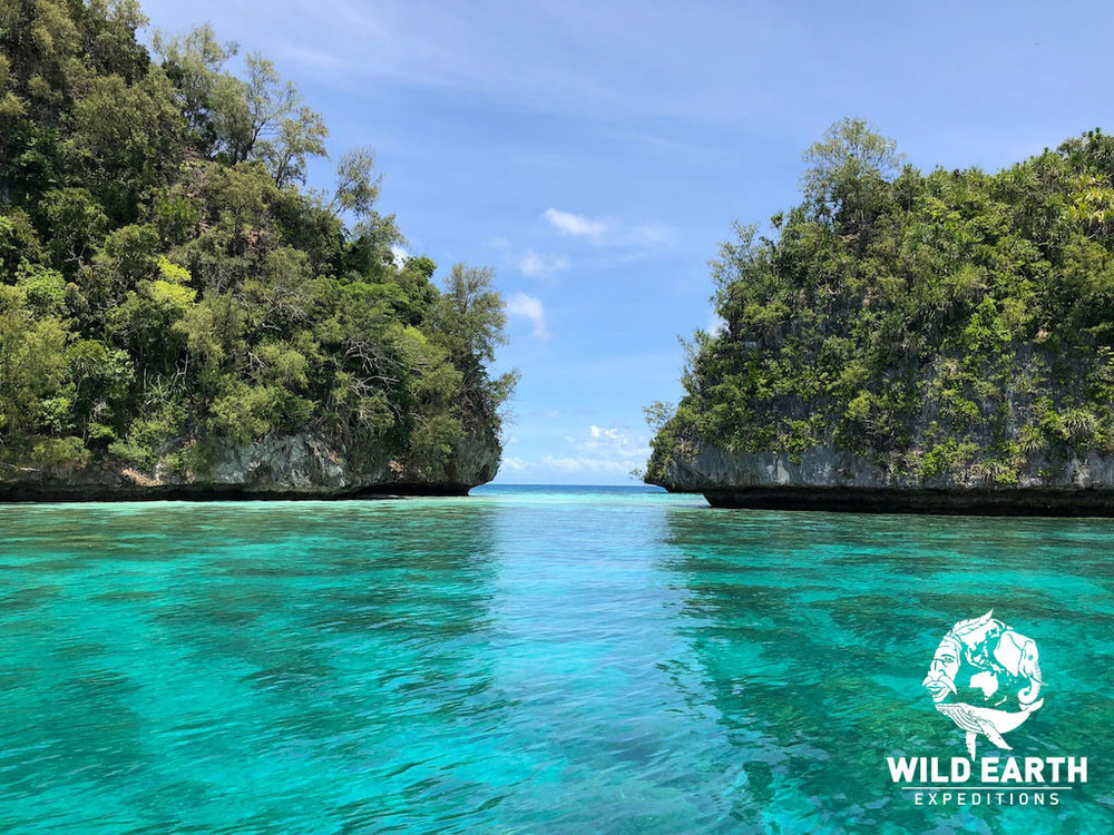 The calm and clear waters - Palau - Wild Earth Expeditions