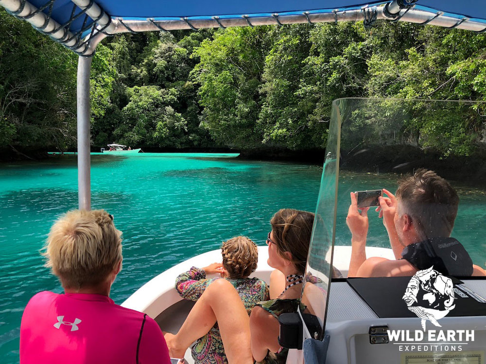 Rock Island Tour - Palau - Wild Earth Expeditions