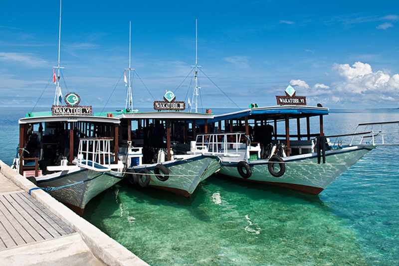 IDN_Wakatobi-Resort-Dive-Boats-©-Wakatobi-Resort-33.jpg