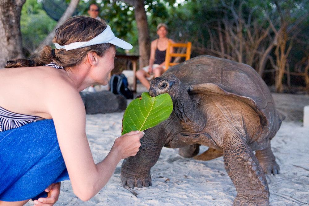 SYC_Aldabra-©08-Thomas-Baechtold-0074.jpg