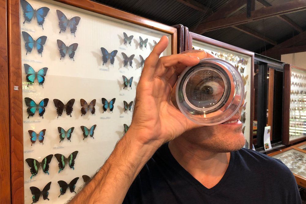 Thomas keeping an 'eye' on things - Australia - Wild Earth Expeditions