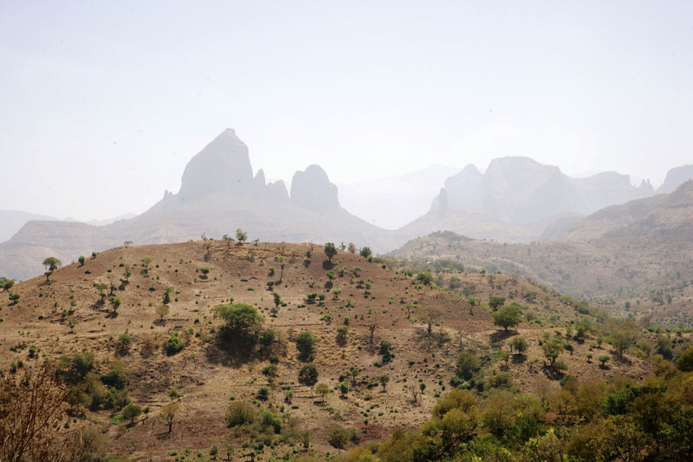 ETH_Simien-Mountain-©-Dinkesh-Ethiopia-Tours-02AM7405.jpg