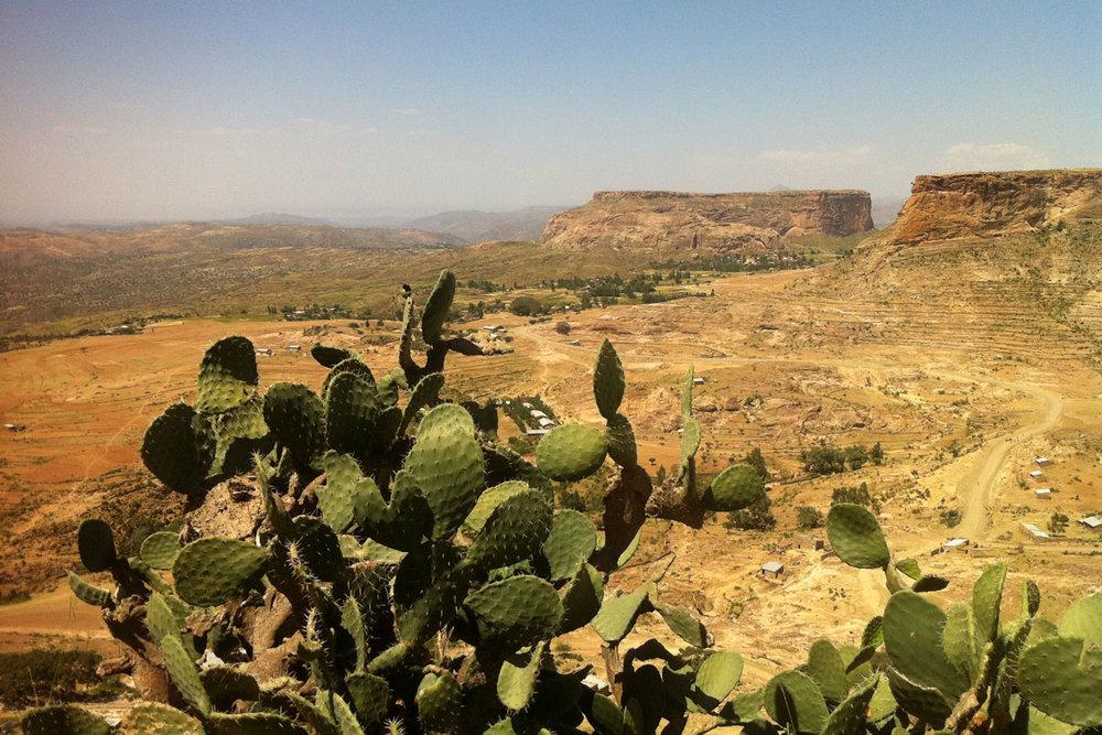 ETH_Tigray-©-Dinkesh-Ethiopia-Tours-104.jpg