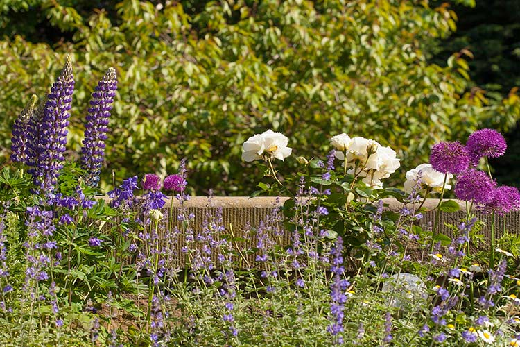 Gardening_43.jpg
