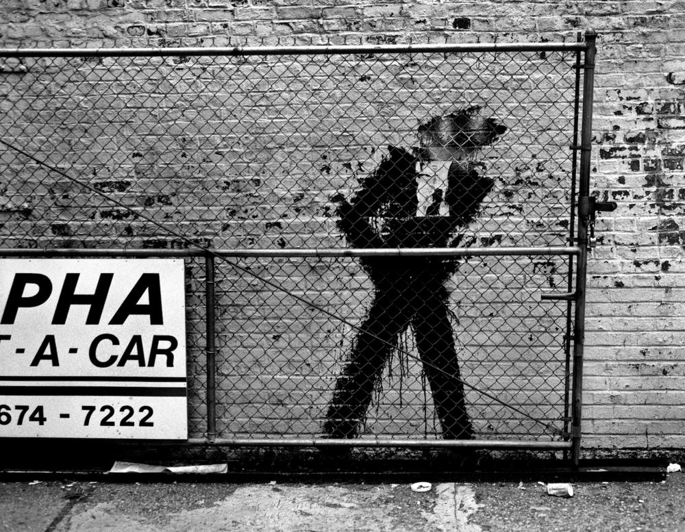 PHA CAR