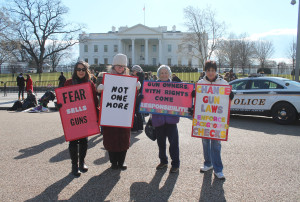 Gun control demonstrators picket in front of the White House. Source: Flickr Creative Commons.