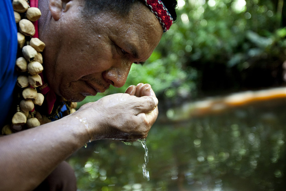 Cofan Indigenous leader Emergildo Criollo smells the petroleum contaminated river near his home in the Amazon rainforest. The Cofán people have suffered numerous health and environmental problems due to oil production on their lands by Texaco (now Chevron) in the late 1960s. Photo credit: Caroline Bennett / Rainforest Action Network