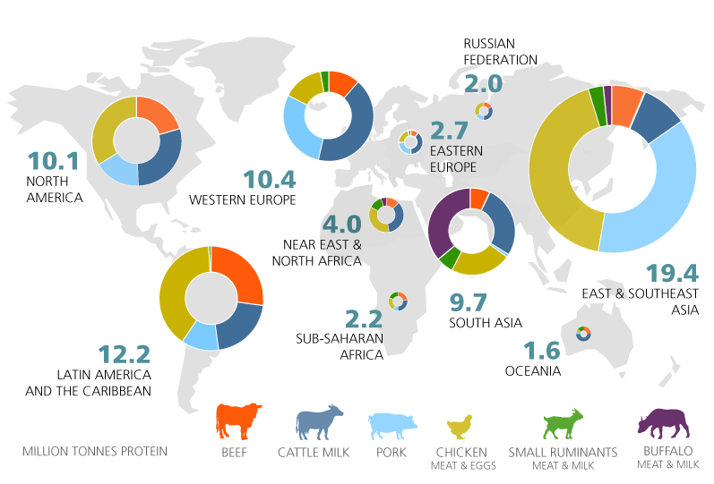 Regional total production and their profile by commodity are shown.Photo credit:  FAO