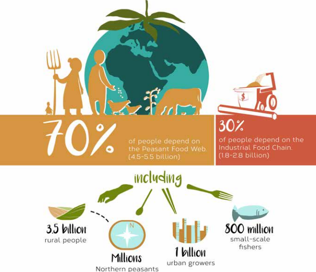 Image 1. Where does humanity get its food?. Source: ETC Group (2017). Available at:  ETC Group