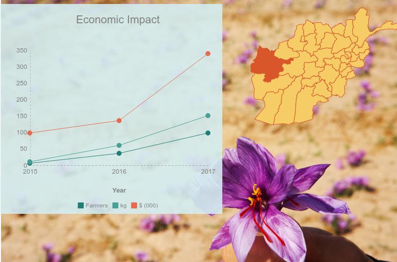 economic-impact_22134778.png
