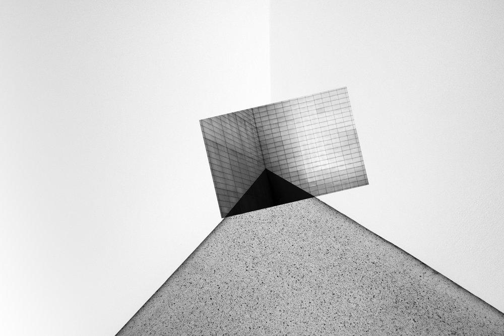 Barcena-Institutionalized-01.jpg