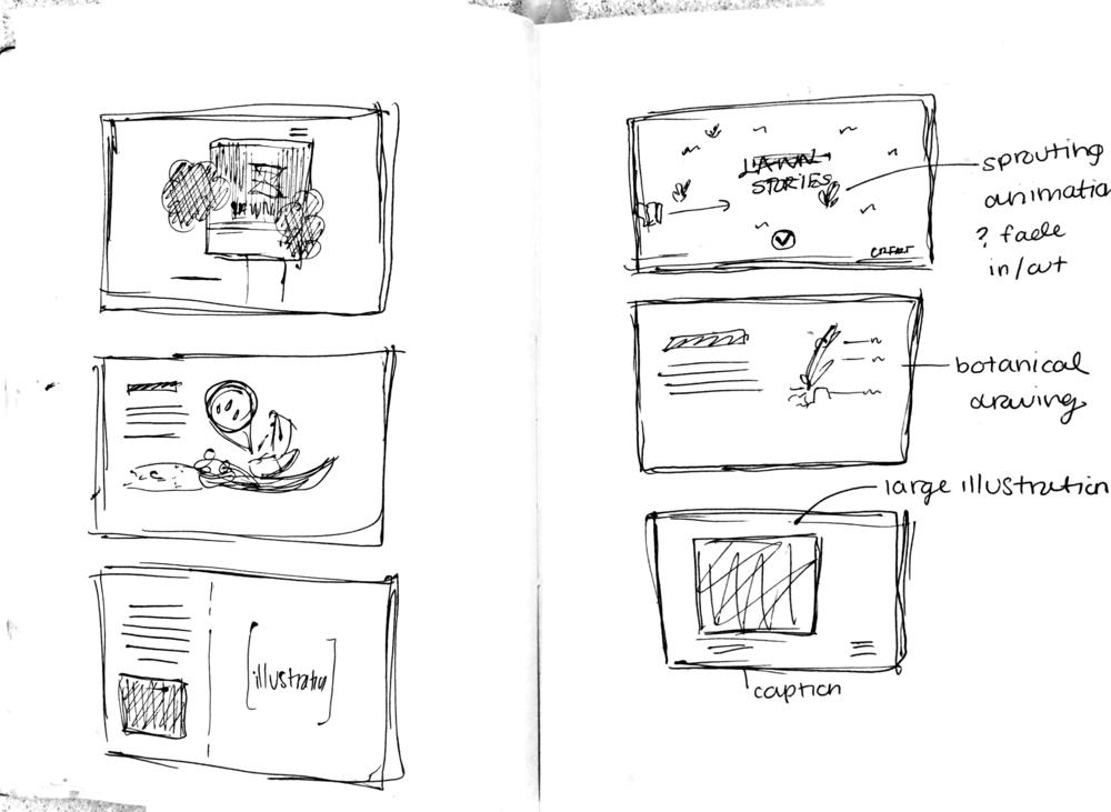 sketch5.png
