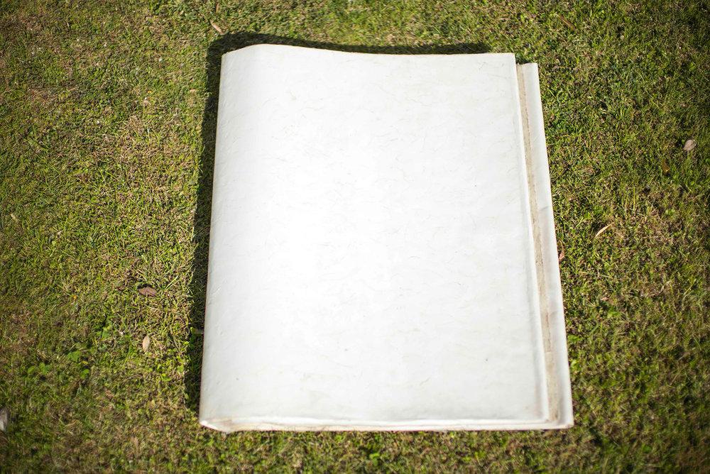 0001-LIBRO,-materiale-vegetale-e-silicone-su-carta,-16-pp-76x60cm-1994-.jpg
