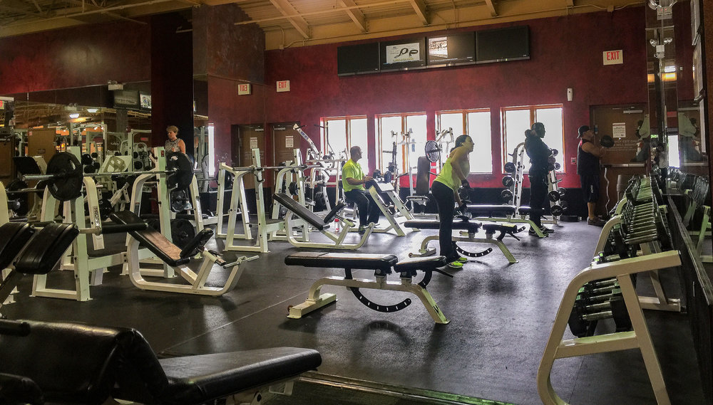 Photo by Marielle Decena   Xsport fitness near Route 83 and North Ave has a wide array of machines and free weights available for its customers.