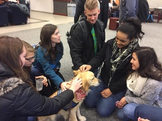 Photos by Roxanne Timan & Cheyenne Roper EC students rally around Eve, the temporary campus LCC K-9 comfort dog, for emotional support and stress relief.