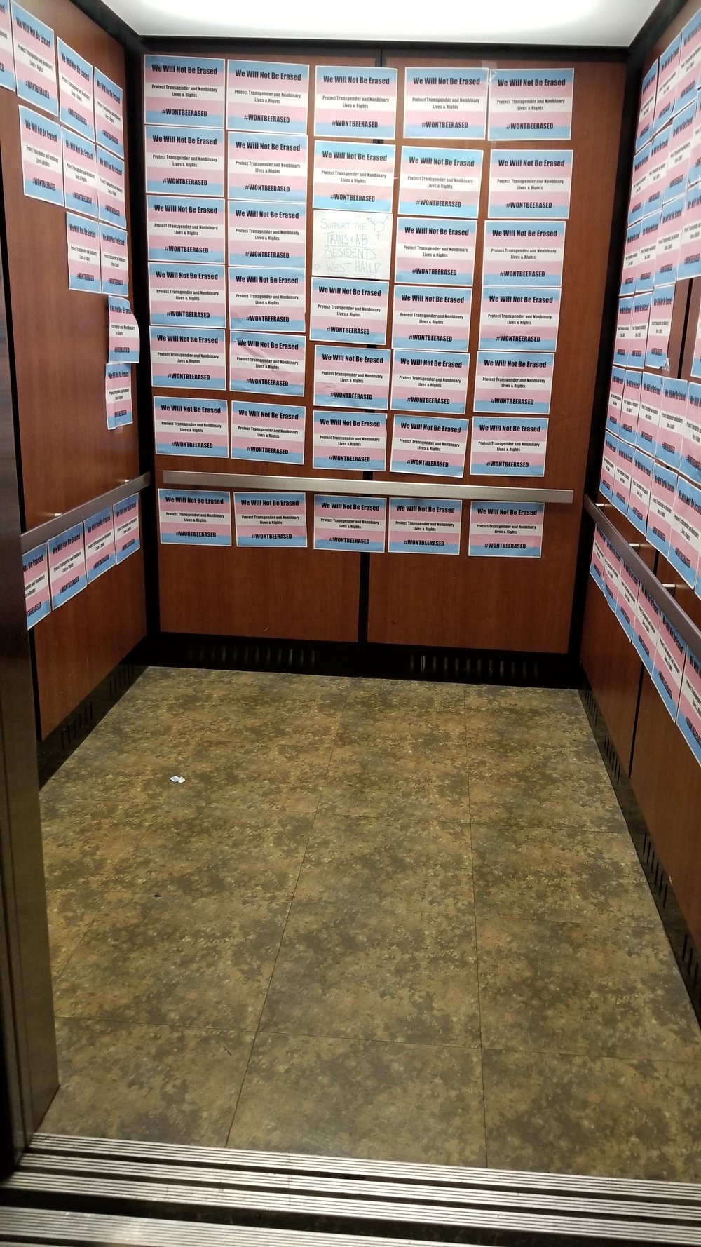 Elevator in West Hall covered with Trans support posters. Photo by Cheyenne Roper.