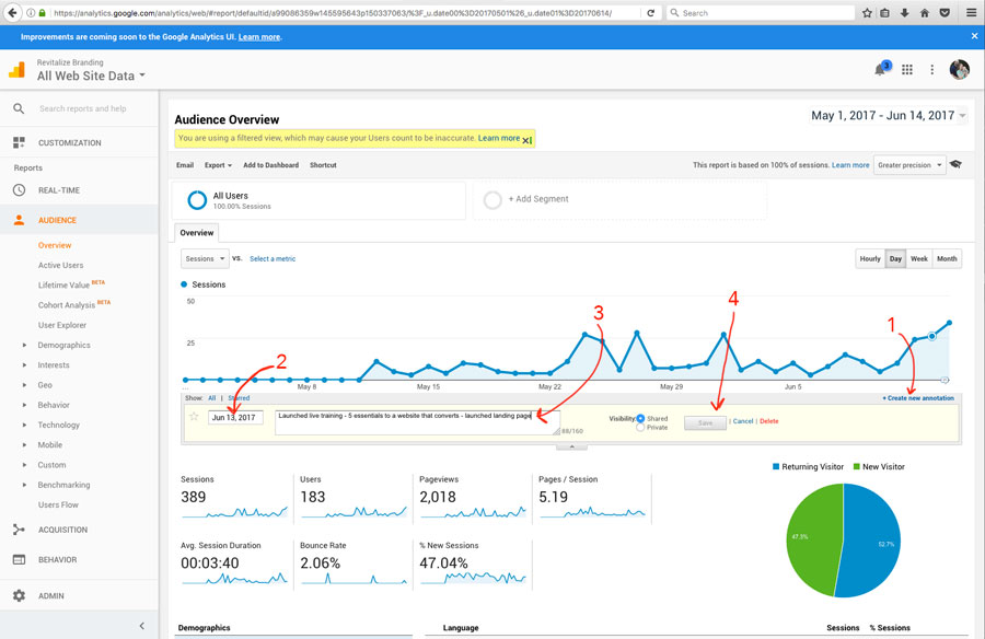 how to use google analytics - revitalize branding