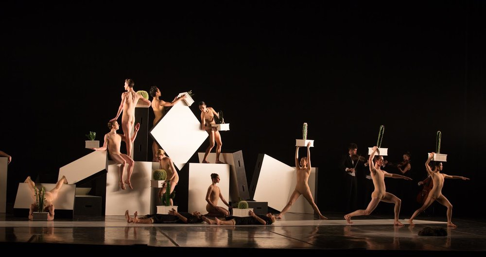 Boston Ballet in Alexander Ekman's Cacti; photo by Rosalie O'Connor, courtesy of Boston Ballet
