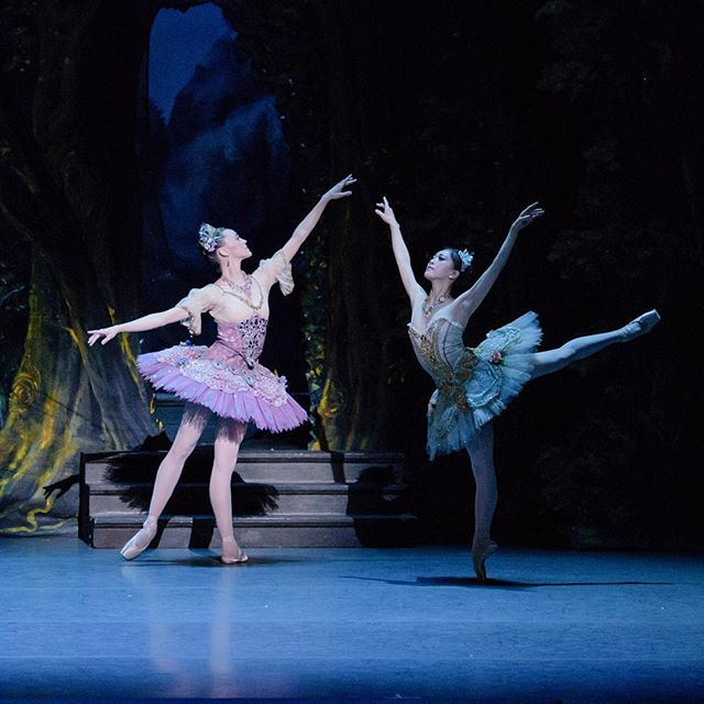 Marius Petipa's The Sleeping Beauty opens this week with @bostonballet! Catch on of five performances of this elegant production at the Boston Opera House, May 11–19. . . . 📷: Dusty Button and @misakuranaga in Marius Petipa's The Sleeping Beauty; by  @lizavoll, courtesy of Boston Ballet
