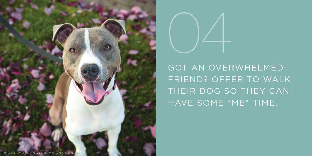 overwhelmed friend, walk their dog, random act of kindness