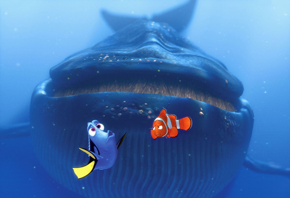 nemo-storybook-whales.jpg