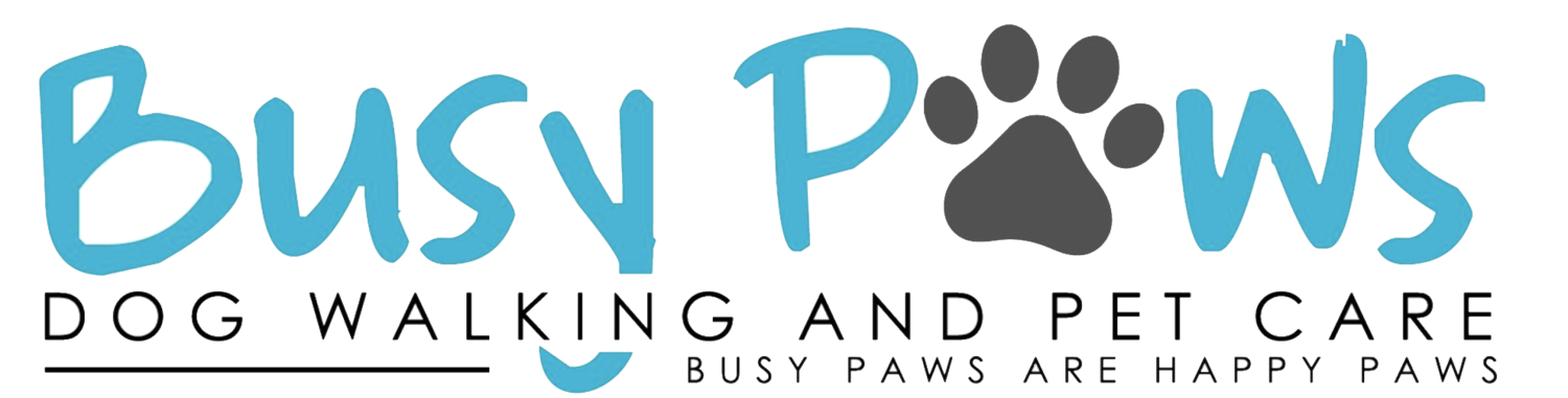 Dog Walkers in Surrey BC | Busy Paws Dog Walking and Pet Care