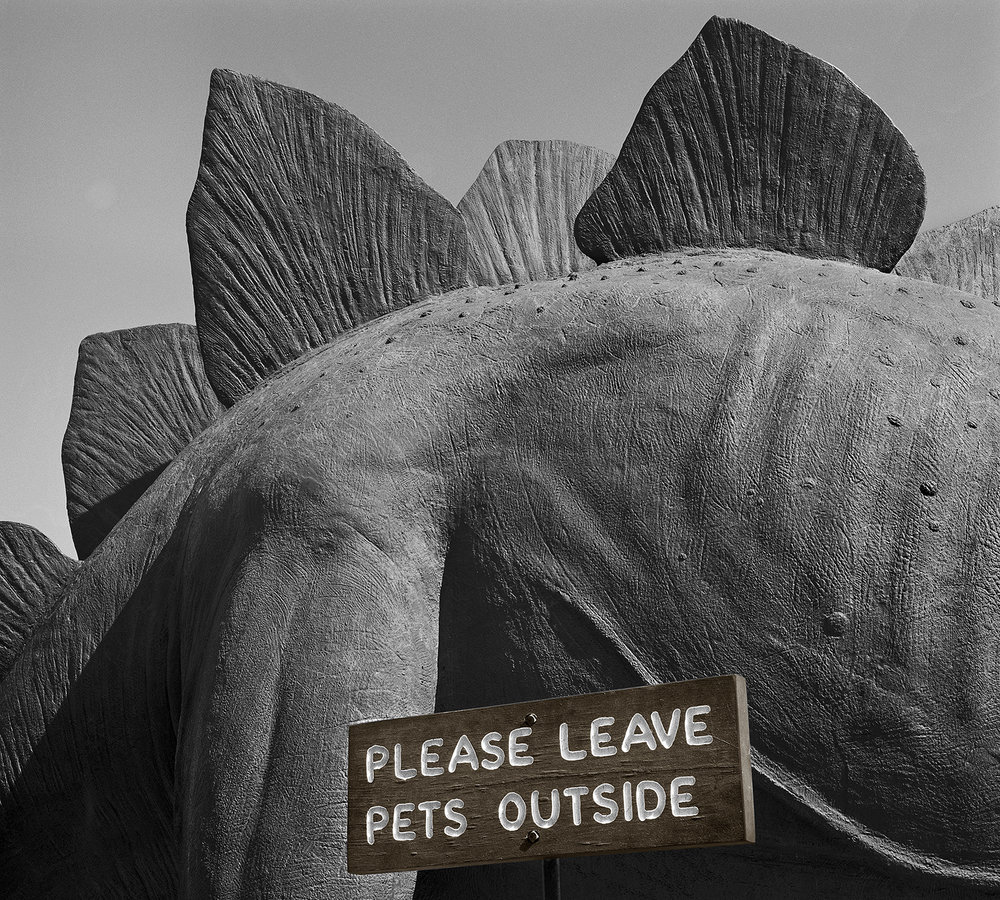 Please Leave Pets Outside, Utah, 1979/2015